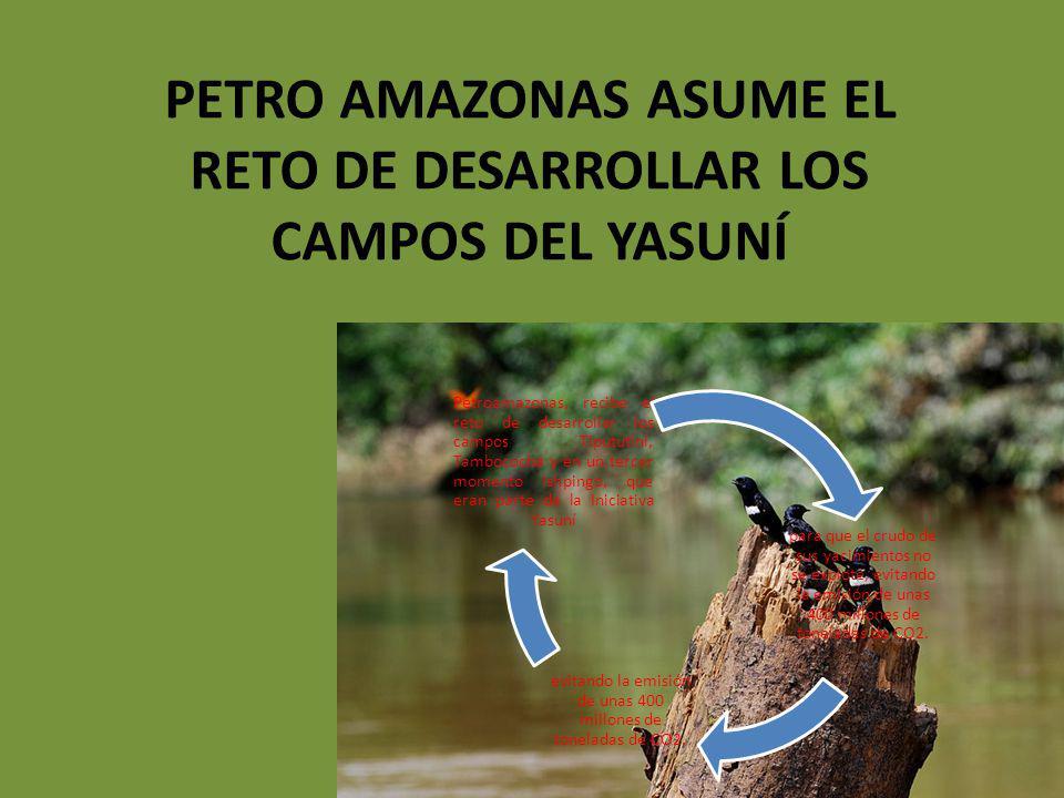 PETRO AMAZONAS ASUME EL RETO DE DESARROLLAR LOS CAMPOS DEL YASUNÍ para que el crudo de sus yacimientos no se explote, evitando la emisión de unas 400