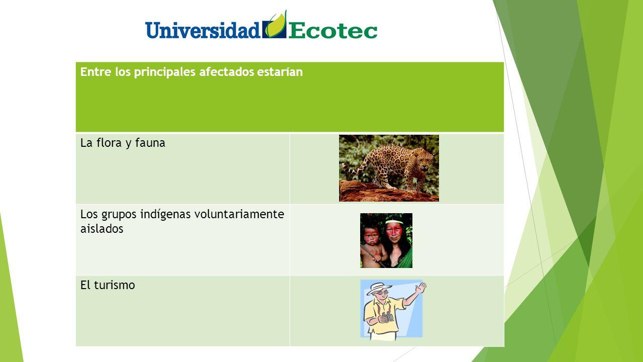 Entre los principales afectados estarían La flora y fauna Los grupos indígenas voluntariamente aislados El turismo