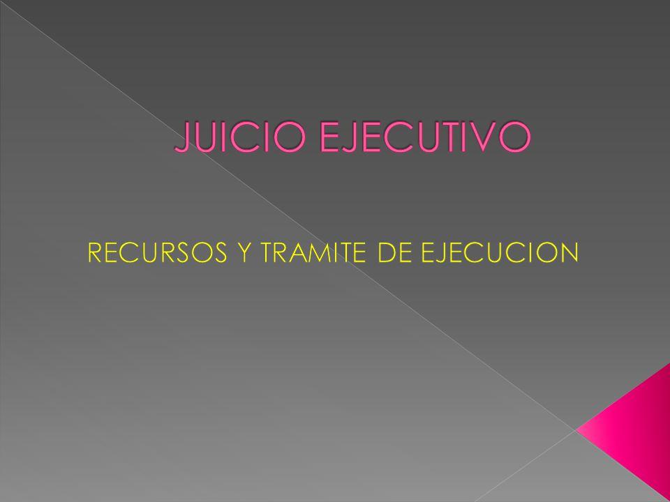 El ejecutante puede interponer los recursos que concede el Código Procesal para los juicios ordinarios.