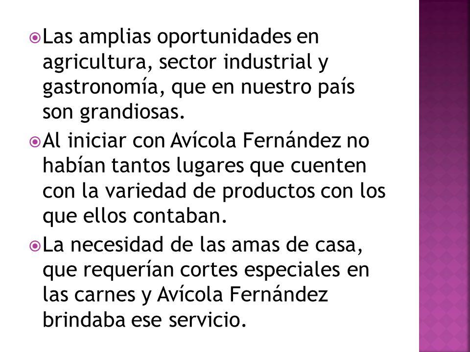 Las amplias oportunidades en agricultura, sector industrial y gastronomía, que en nuestro país son grandiosas.