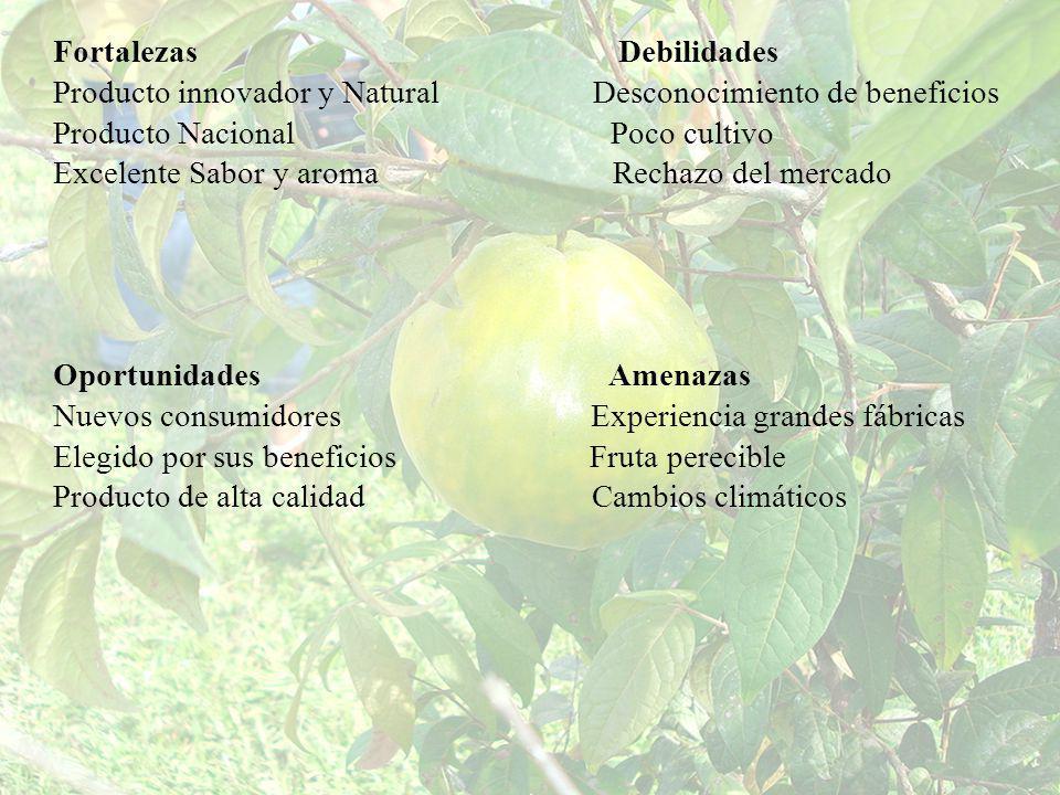 Fortalezas Debilidades Producto innovador y Natural Desconocimiento de beneficios Producto Nacional Poco cultivo Excelente Sabor y aroma Rechazo del m