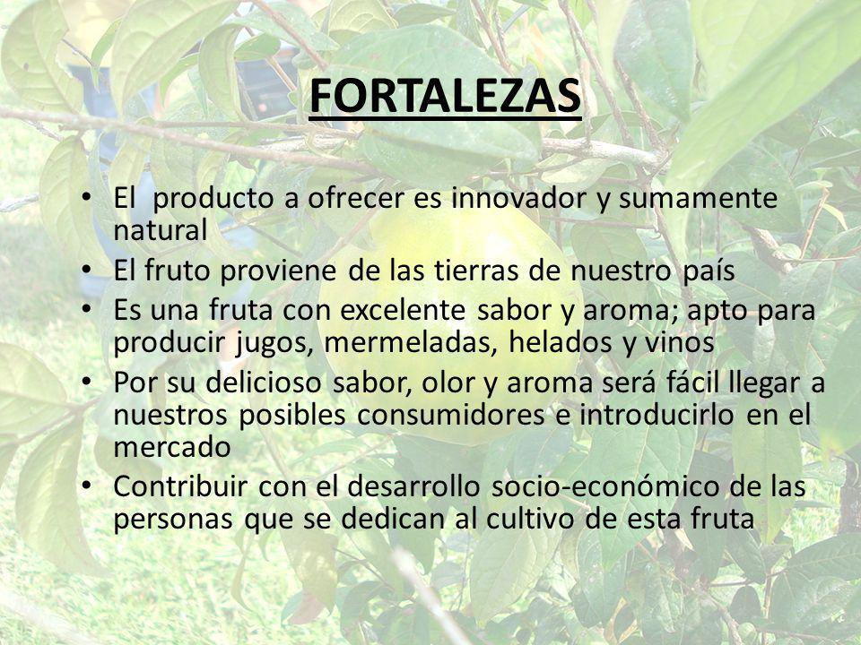 FORTALEZAS El producto a ofrecer es innovador y sumamente natural El fruto proviene de las tierras de nuestro país Es una fruta con excelente sabor y