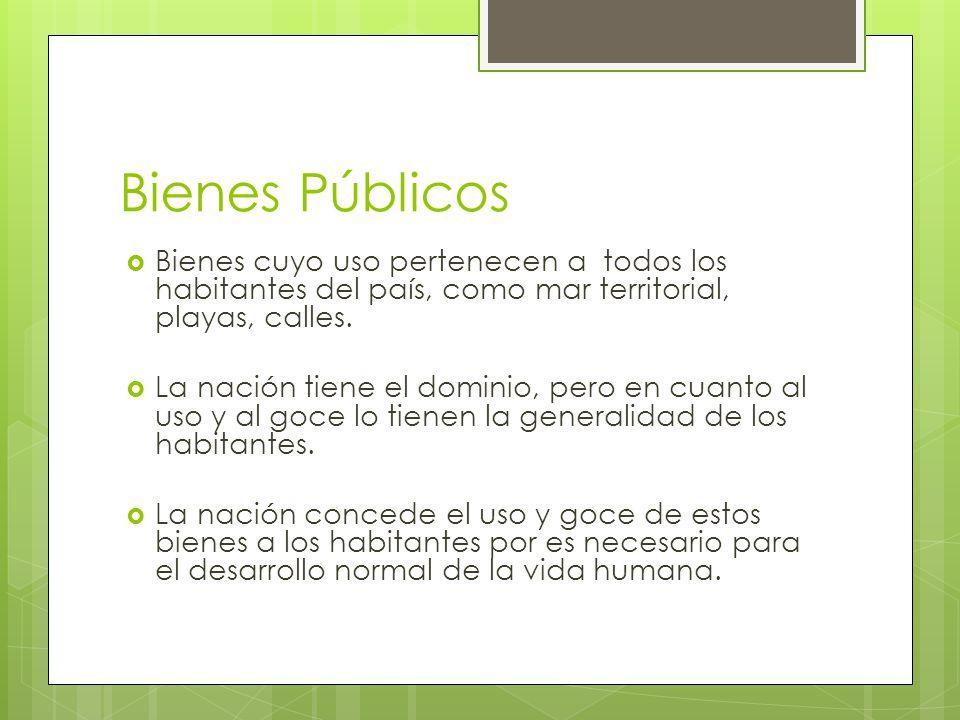 Bienes Públicos Bienes cuyo uso pertenecen a todos los habitantes del país, como mar territorial, playas, calles. La nación tiene el dominio, pero en