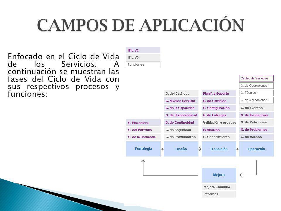 Enfocado en el Ciclo de Vida de los Servicios. A continuación se muestran las fases del Ciclo de Vida con sus respectivos procesos y funciones: