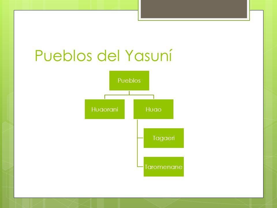 Pueblos del Yasuní Pueblos HuaoraniHuao Tagaeri Taromenane
