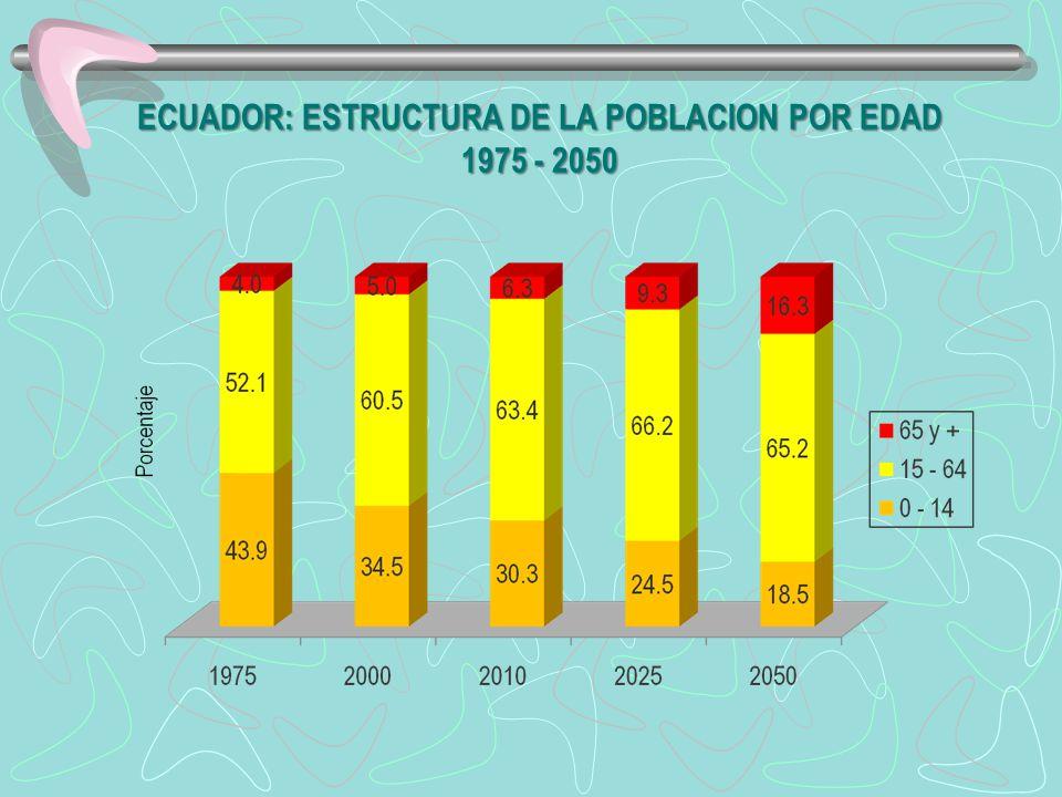 ECUADOR: ESTRUCTURA DE LA POBLACION POR EDAD 1975 - 2050