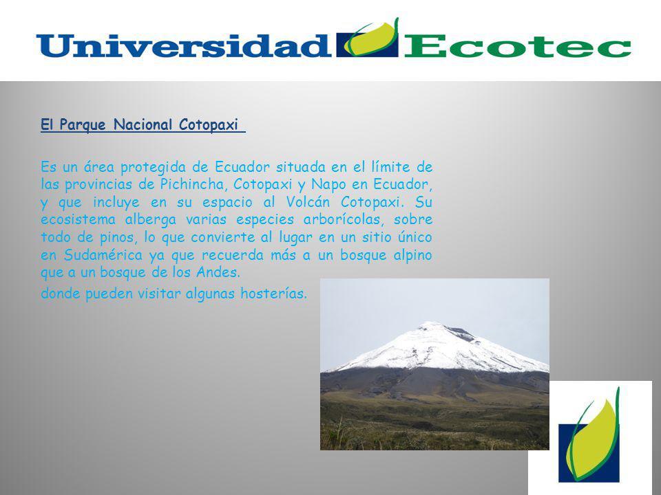 El Parque Nacional Cotopaxi Es un área protegida de Ecuador situada en el límite de las provincias de Pichincha, Cotopaxi y Napo en Ecuador, y que incluye en su espacio al Volcán Cotopaxi.