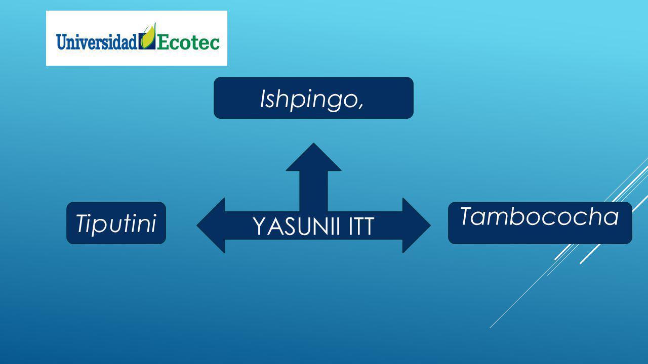 YASUNII ITT Ishpingo, Tiputini Tambococha