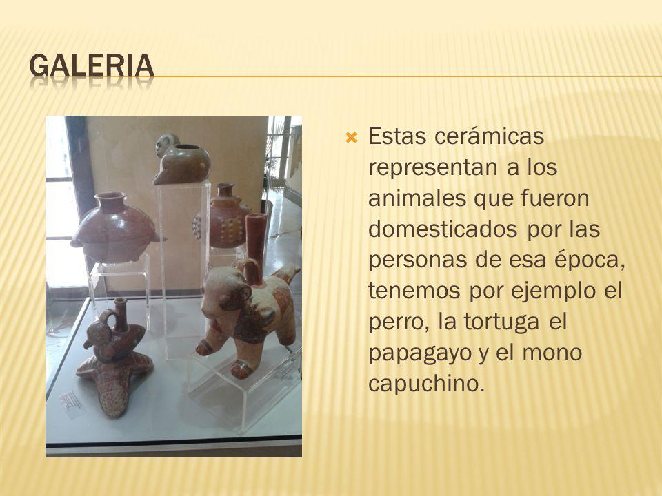 Estas cerámicas representan a los animales que fueron domesticados por las personas de esa época, tenemos por ejemplo el perro, la tortuga el papagayo y el mono capuchino.