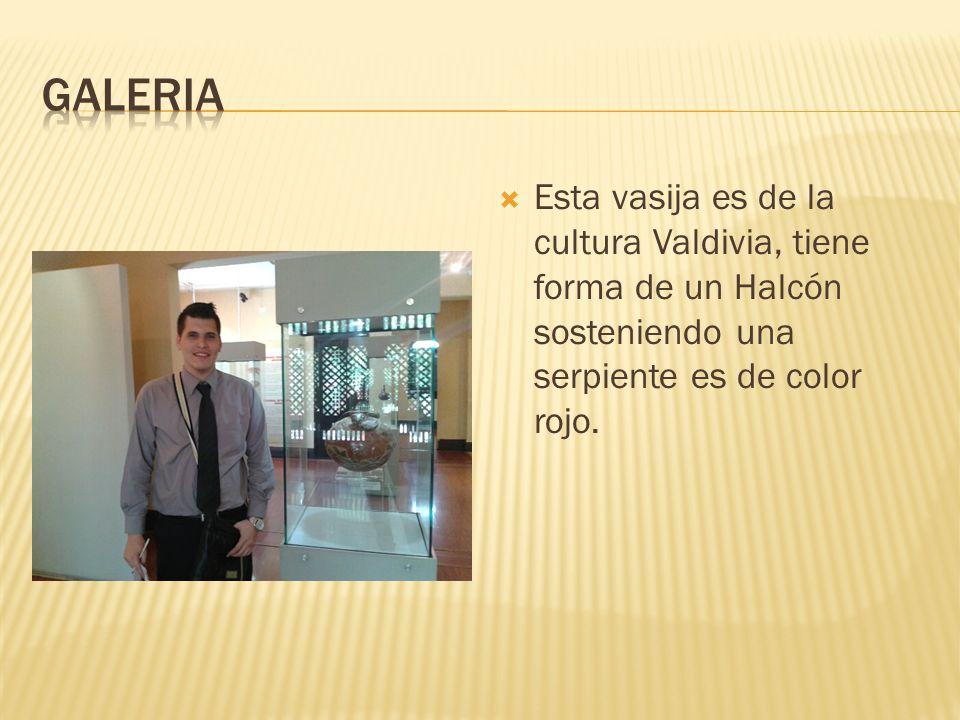 Esta vasija es de la cultura Valdivia, tiene forma de un Halcón sosteniendo una serpiente es de color rojo.