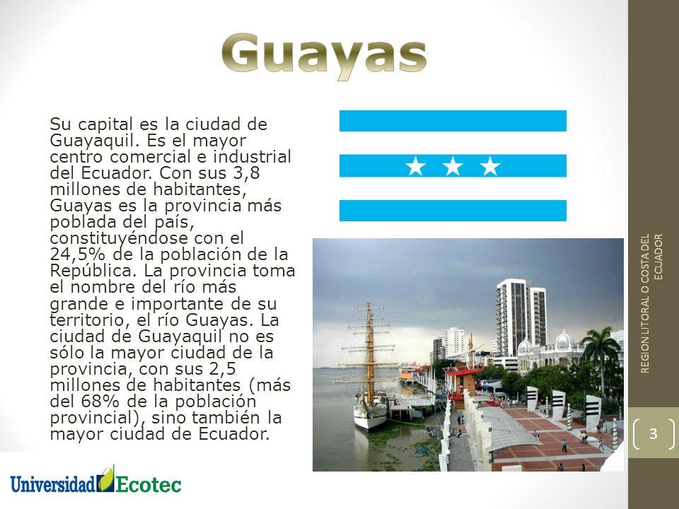 Su capital es la ciudad de Guayaquil. Es el mayor centro comercial e industrial del Ecuador. Con sus 3,8 millones de habitantes, Guayas es la provinci