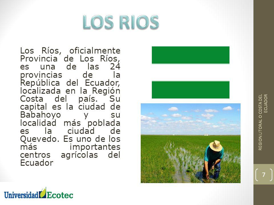 Los Ríos, oficialmente Provincia de Los Ríos, es una de las 24 provincias de la República del Ecuador, localizada en la Región Costa del país. Su capi