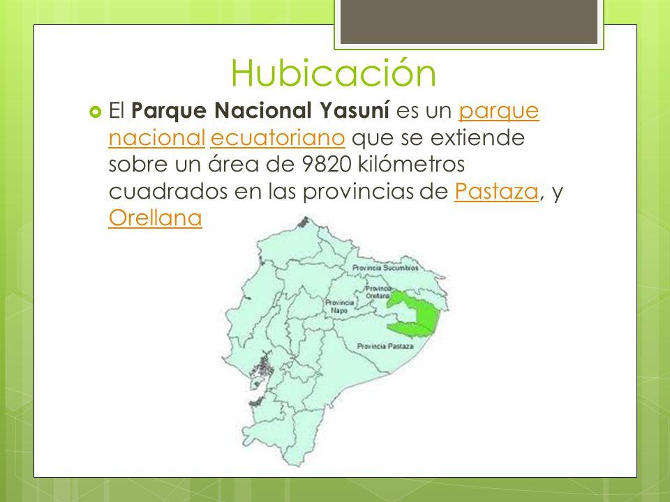 Hubicación El Parque Nacional Yasuní es un parque nacional ecuatoriano que se extiende sobre un área de 9820 kilómetros cuadrados en las provincias de