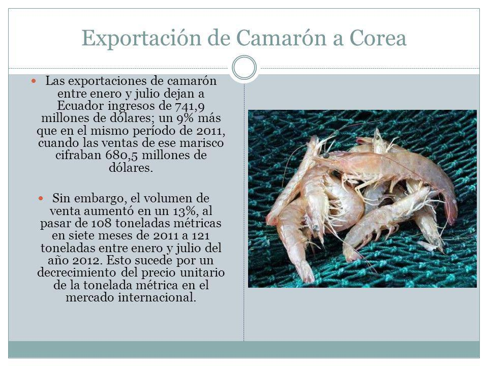 Exportación de Camarón a Corea Las exportaciones de camarón entre enero y julio dejan a Ecuador ingresos de 741,9 millones de dólares; un 9% más que en el mismo período de 2011, cuando las ventas de ese marisco cifraban 680,5 millones de dólares.