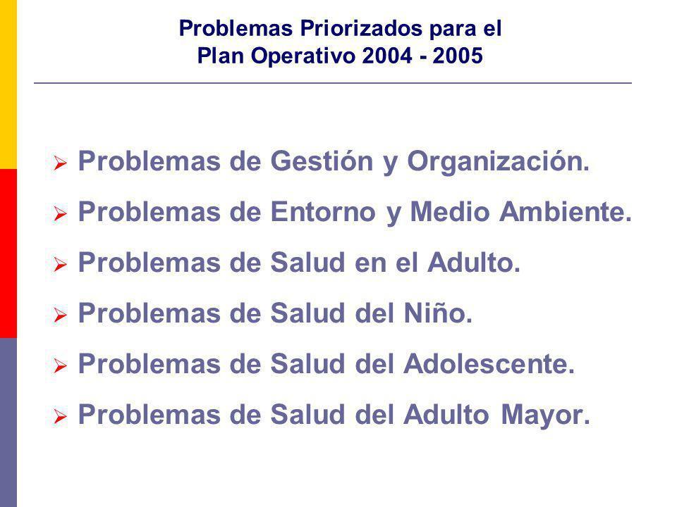 Problemas Priorizados para el Plan Operativo 2004 - 2005 Problemas de Gestión y Organización. Problemas de Entorno y Medio Ambiente. Problemas de Salu