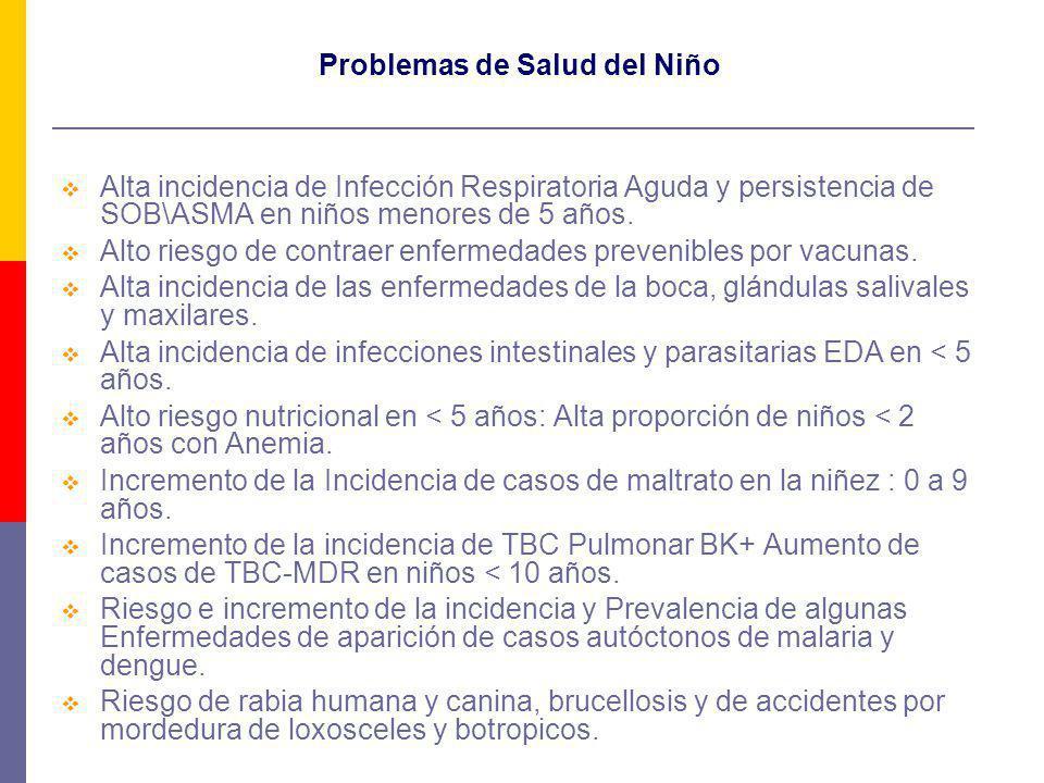Problemas de Salud del Niño Alta incidencia de Infección Respiratoria Aguda y persistencia de SOB\ASMA en niños menores de 5 años. Alto riesgo de cont