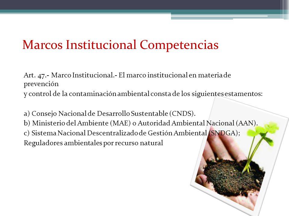 Art. 47.- Marco Institucional.- El marco institucional en materia de prevención y control de la contaminación ambiental consta de los siguientes estam