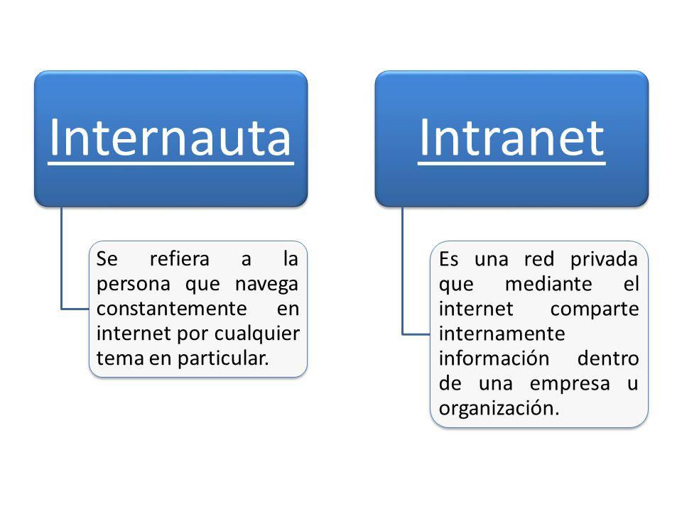 Internauta Se refiera a la persona que navega constantemente en internet por cualquier tema en particular.