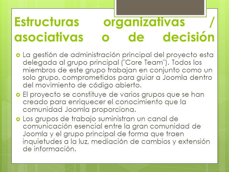 Estructuras organizativas / asociativas o de decisión La gestión de administración principal del proyecto esta delegada al grupo principal (