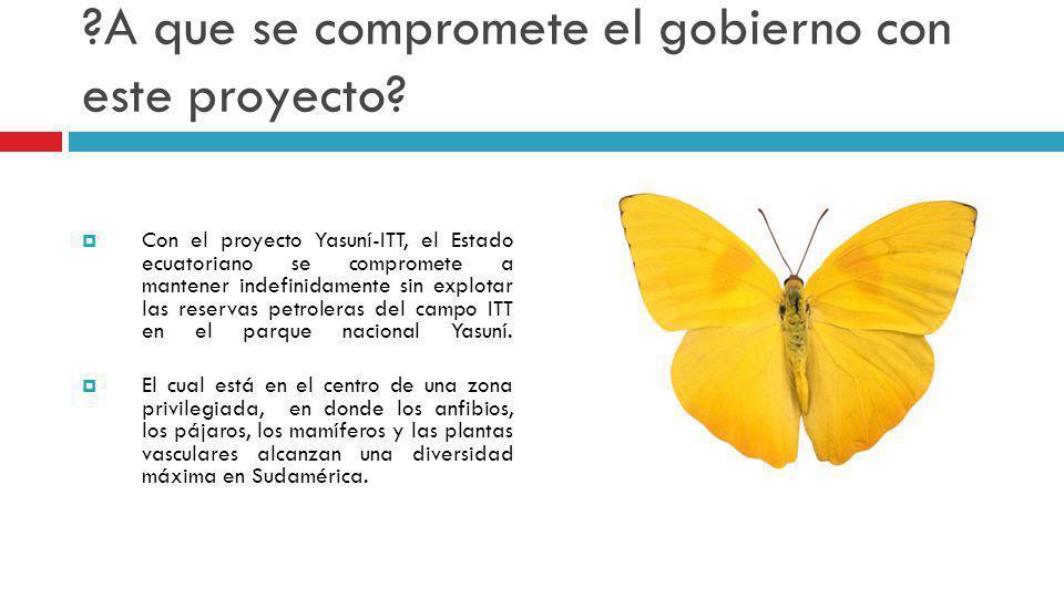?A que se compromete el gobierno con este proyecto? Con el proyecto Yasuní-ITT, el Estado ecuatoriano se compromete a mantener indefinidamente sin exp