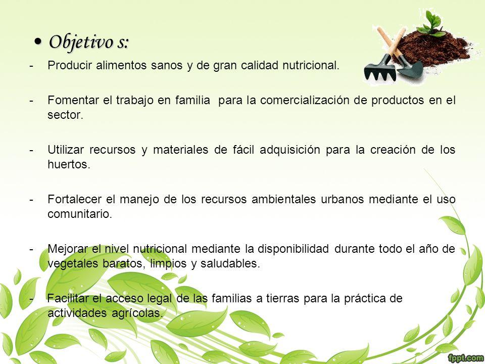 Objetivo s:Objetivo s: -Producir alimentos sanos y de gran calidad nutricional. -Fomentar el trabajo en familia para la comercialización de productos