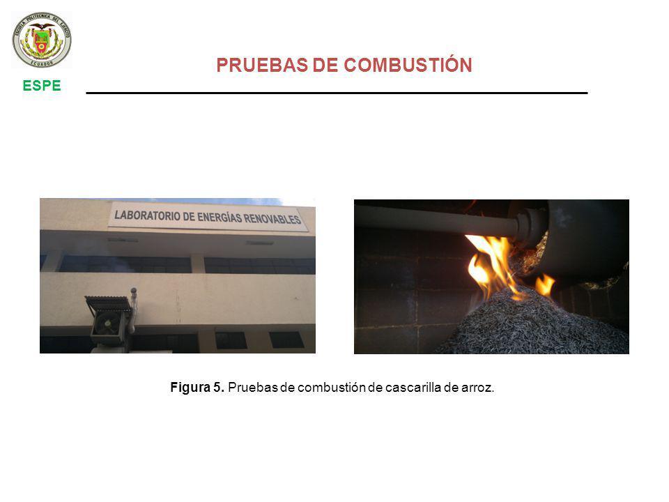 Figura 5. Pruebas de combustión de cascarilla de arroz. PRUEBAS DE COMBUSTIÓN ESPE