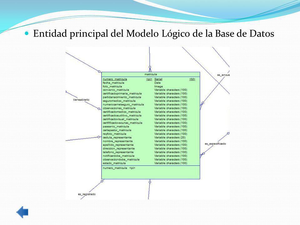 Entidad principal del Modelo Lógico de la Base de Datos