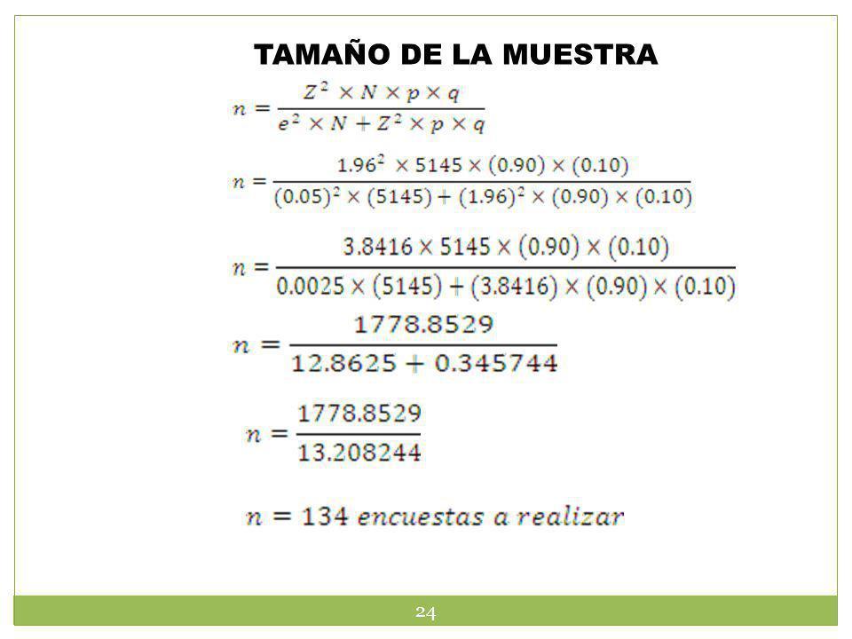 TAMAÑO DE LA MUESTRA 24