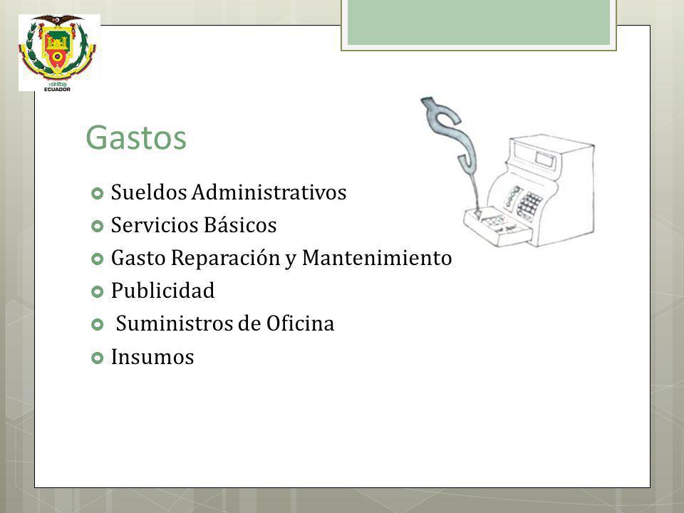 Gastos Sueldos Administrativos Servicios Básicos Gasto Reparación y Mantenimiento Publicidad Suministros de Oficina Insumos