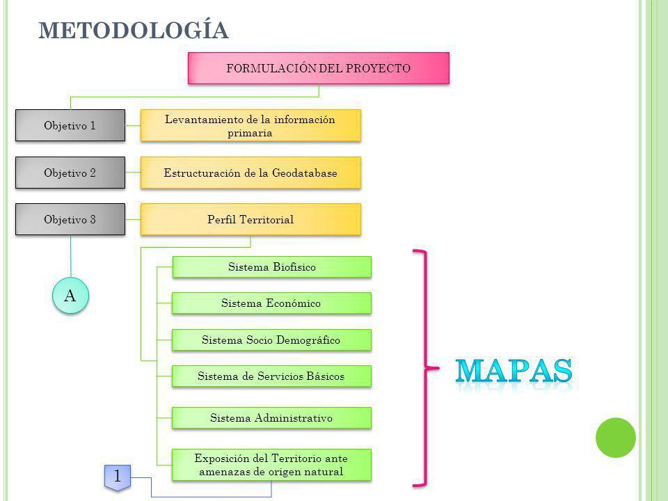 METODOLOGÍA FORMULACIÓN DEL PROYECTO Objetivo 1 Levantamiento de la información primaria Levantamiento de la información primaria Objetivo 2 Estructur