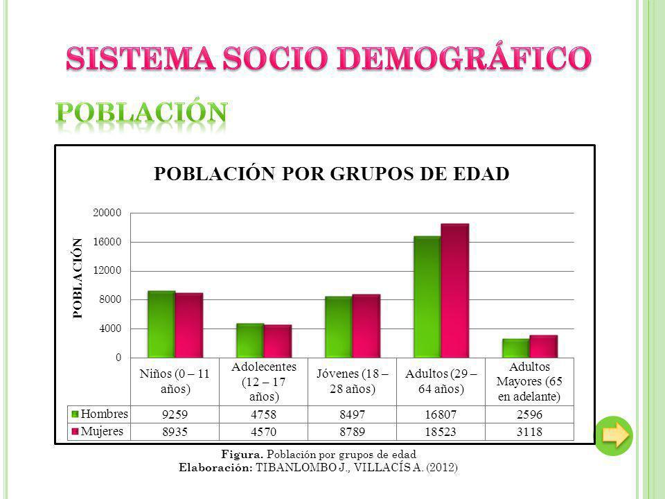 Figura. Población por grupos de edad Elaboración: TIBANLOMBO J., VILLACÍS A. (2012)