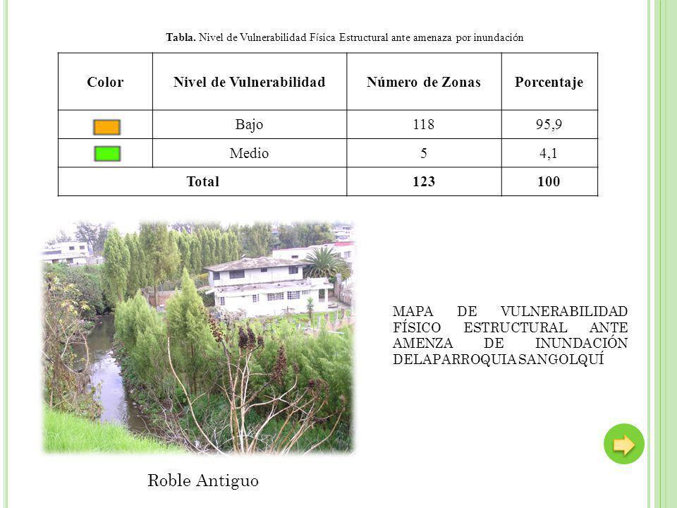 ColorNivel de VulnerabilidadNúmero de ZonasPorcentaje Bajo11895,9 Medio54,1 Total123100 Tabla. Nivel de Vulnerabilidad F í sica Estructural ante amena