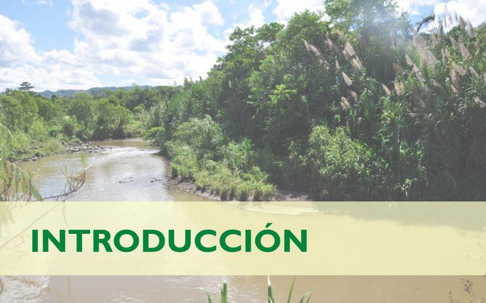 INTRODUCCIÓN Antecedentes El río Puyo es un cauce hídrico permanente, tributario de la margen izquierda del río Pastaza.