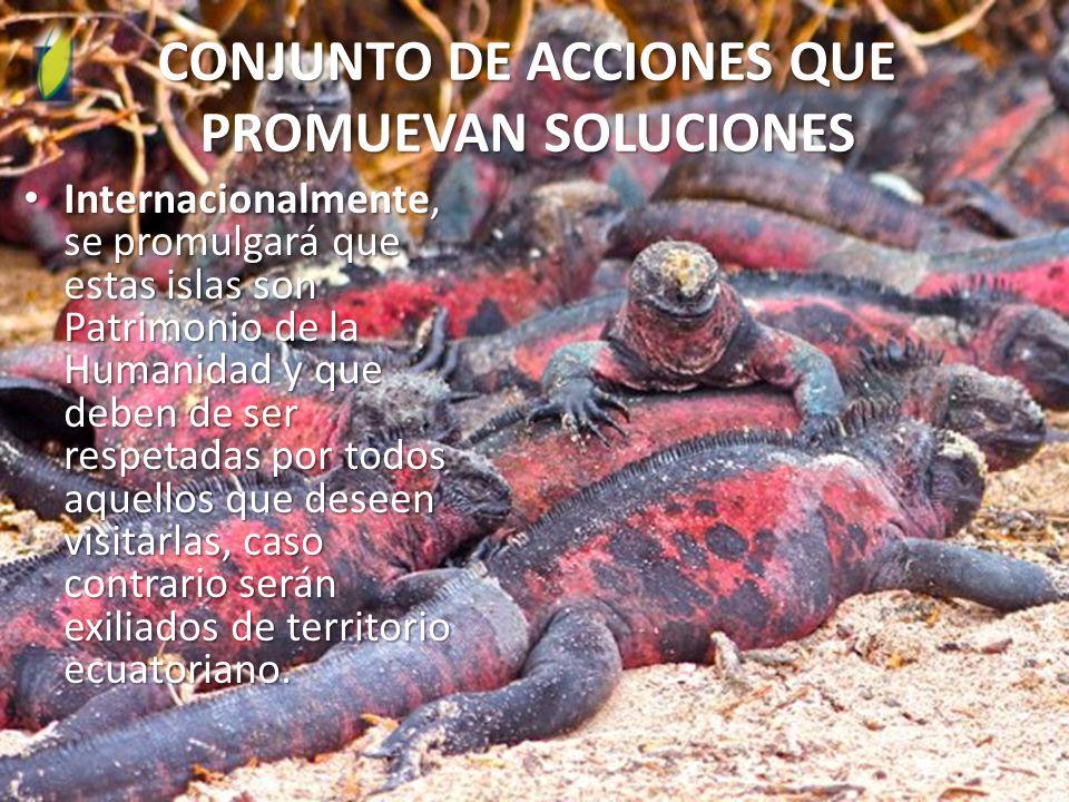 CONJUNTO DE ACCIONES QUE PROMUEVAN SOLUCIONES Internacionalmente, se promulgará que estas islas son Patrimonio de la Humanidad y que deben de ser respetadas por todos aquellos que deseen visitarlas, caso contrario serán exiliados de territorio ecuatoriano.