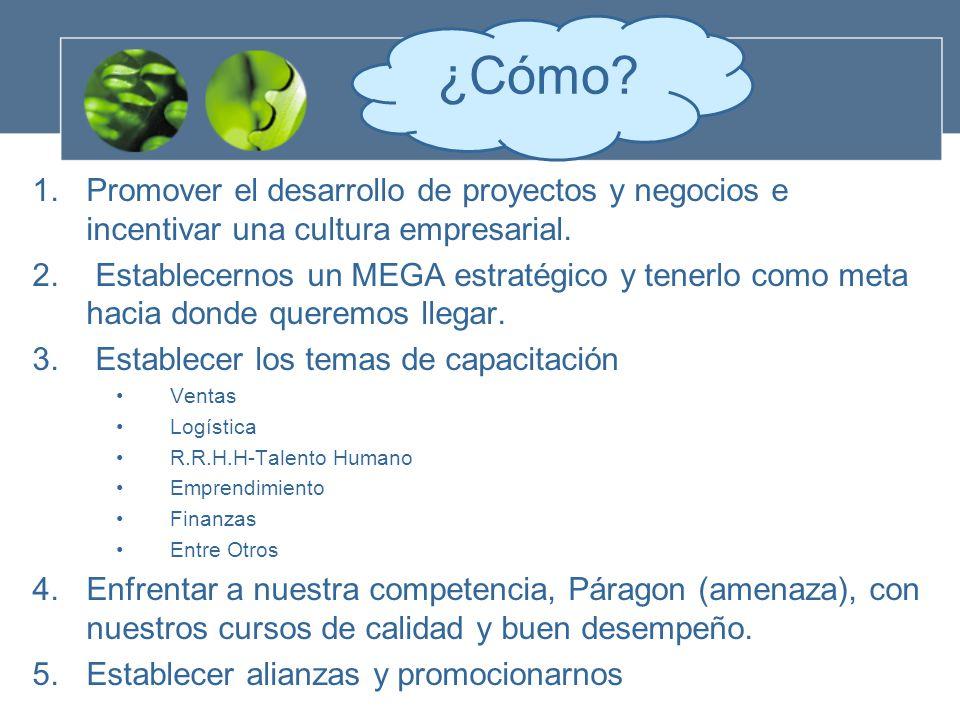 1.Promover el desarrollo de proyectos y negocios e incentivar una cultura empresarial.