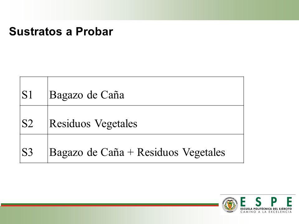 Sustratos a Probar SUSTRATOS PARA EL COMPOST S1Bagazo de Caña S2Residuos Vegetales S3Bagazo de Caña + Residuos Vegetales