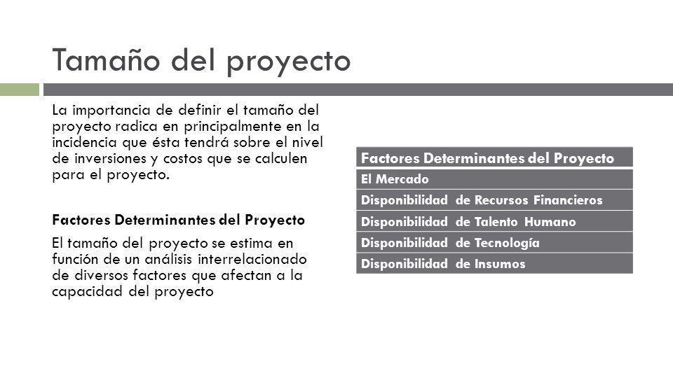 Tamaño del proyecto La importancia de definir el tamaño del proyecto radica en principalmente en la incidencia que ésta tendrá sobre el nivel de inversiones y costos que se calculen para el proyecto.