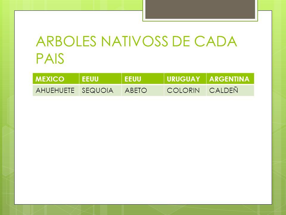ARBOLES NATIVOSS DE CADA PAIS MEXICOEEUU URUGUAYARGENTINA AHUEHUETESEQUOIAABETOCOLORINCALDEÑ