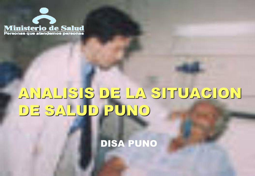 ANALISIS DE LA SITUACION DE SALUD PUNO DISA PUNO