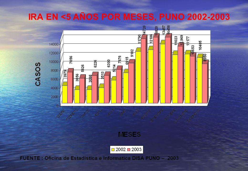 IRA EN <5 AÑOS POR MESES, PUNO 2002-2003 FUENTE : Oficina de Estadistica e Informatica DISA PUNO – 2003
