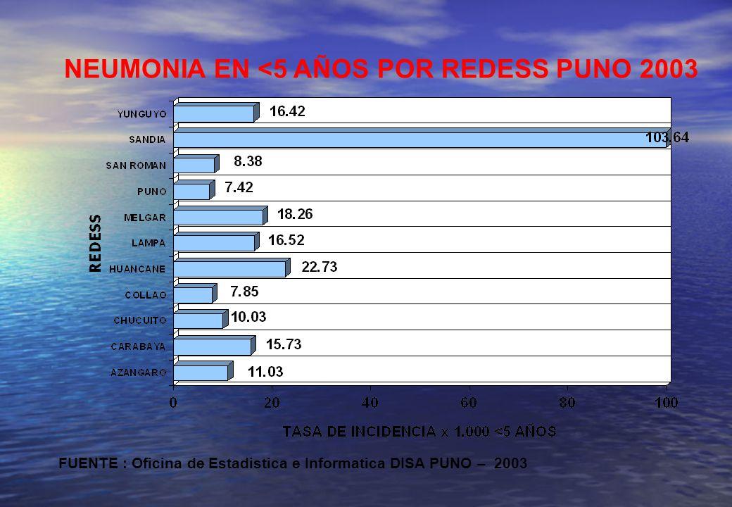 NEUMONIA EN <5 AÑOS POR REDESS PUNO 2003 FUENTE : Oficina de Estadistica e Informatica DISA PUNO – 2003