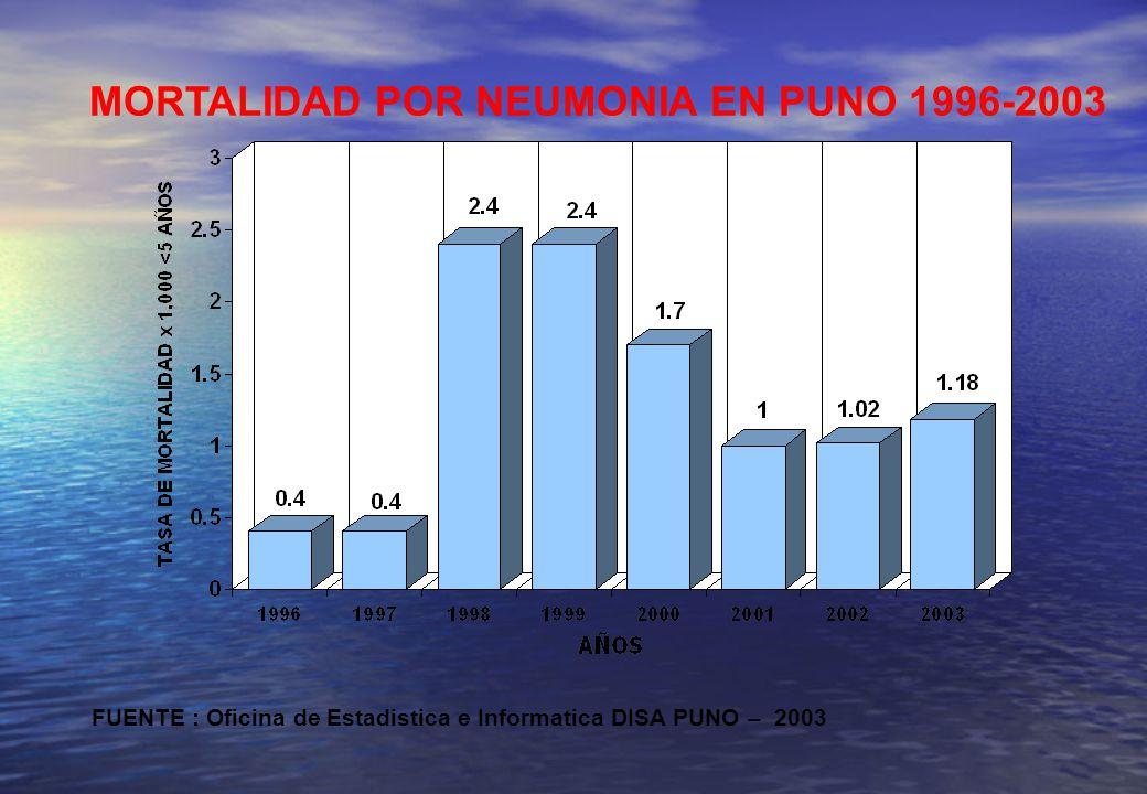 MORTALIDAD POR NEUMONIA EN PUNO 1996-2003 FUENTE : Oficina de Estadistica e Informatica DISA PUNO – 2003