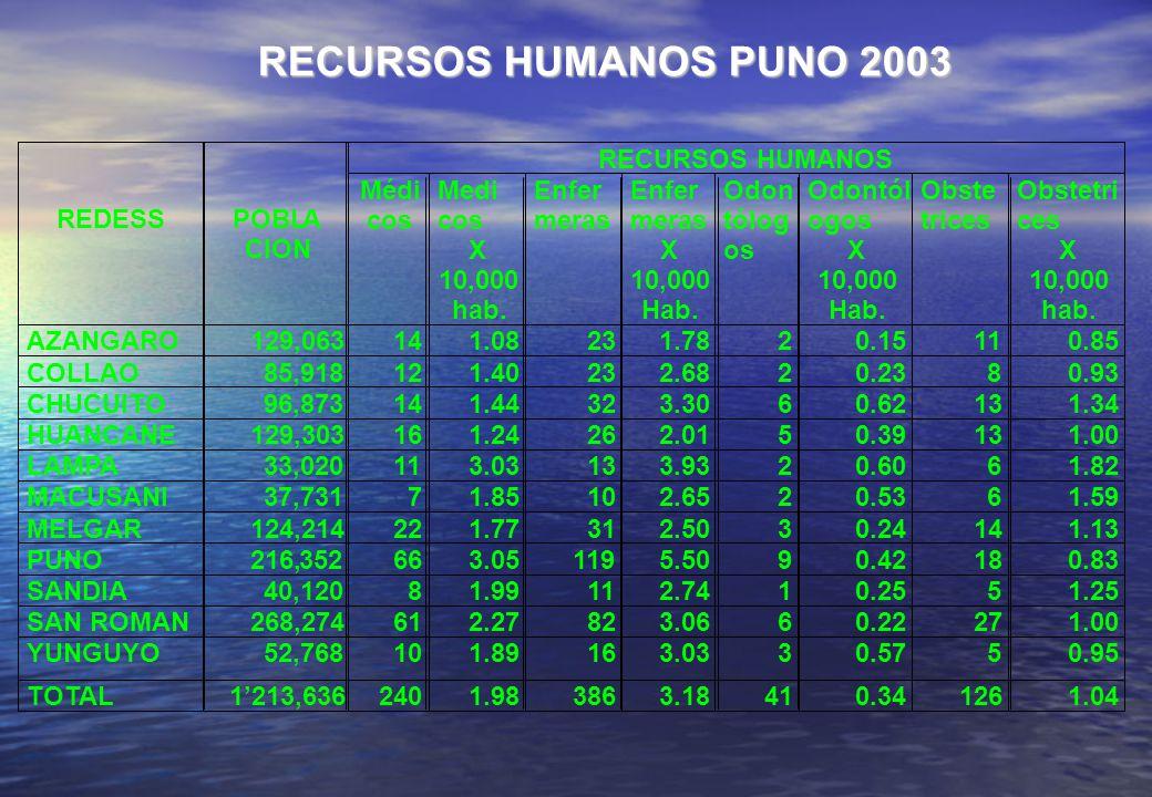 RECURSOS HUMANOS PUNO 2003