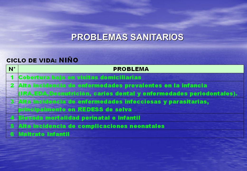 PROBLEMAS SANITARIOS