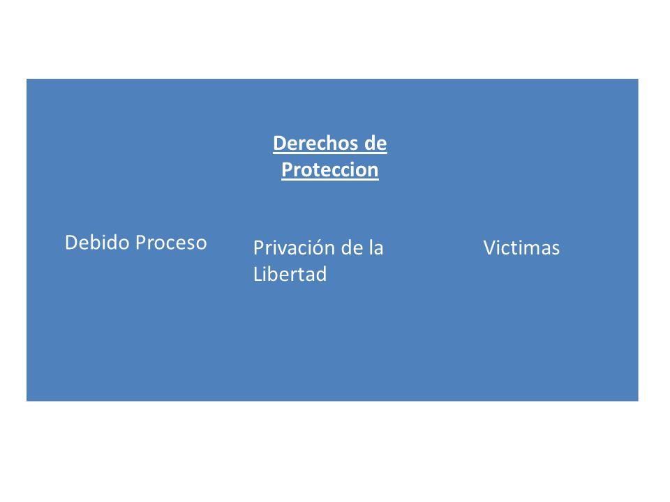 Derechos de Proteccion Debido Proceso Privación de la Libertad Victimas