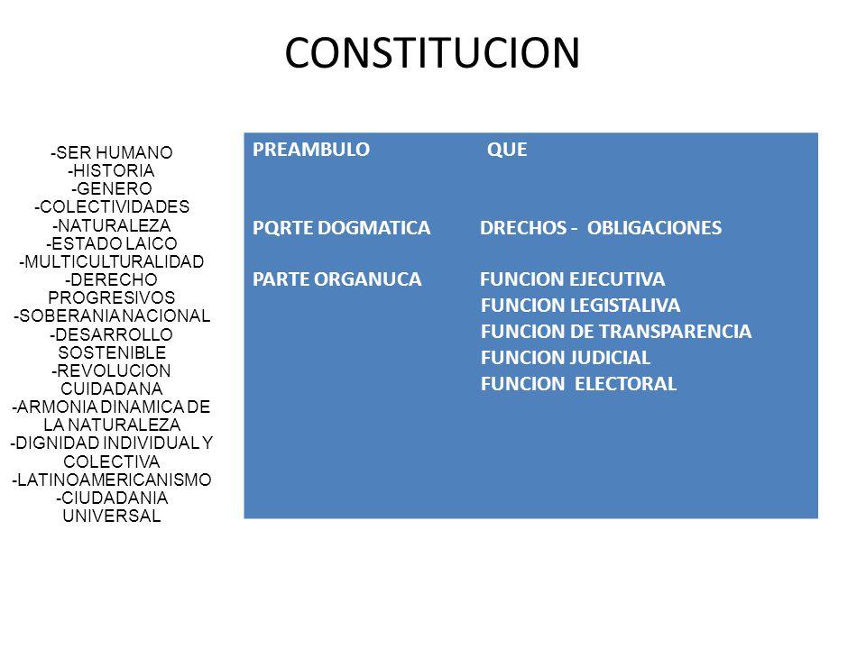 CONSTITUCION -SER HUMANO -HISTORIA -GENERO -COLECTIVIDADES -NATURALEZA -ESTADO LAICO -MULTICULTURALIDAD -DERECHO PROGRESIVOS -SOBERANIA NACIONAL -DESA
