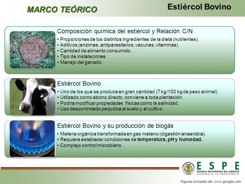MARCO TEÓRICO Estiércol Bovino Composición química del estiércol y Relación C/N Proporciones de los distintos ingredientes de la dieta (nutrientes). A