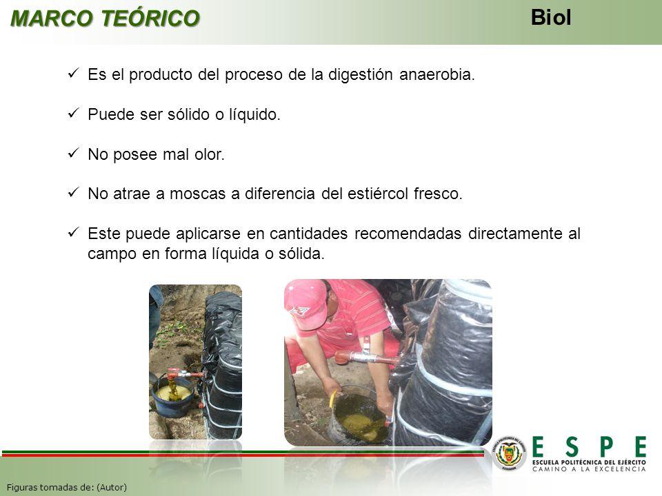 MARCO TEÓRICO Biol Es el producto del proceso de la digestión anaerobia. Puede ser sólido o líquido. No posee mal olor. No atrae a moscas a diferencia