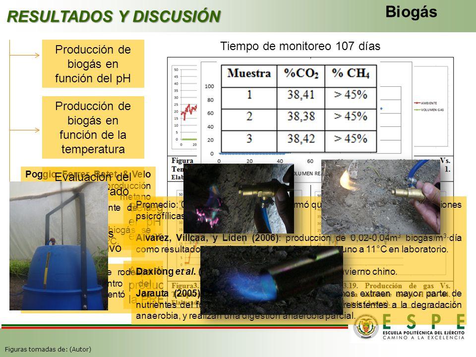 RESULTADOS Y DISCUSIÓN Biogás Producción de biogás en función del pH Tiempo de monitoreo 107 días Se registraron los niveles altos de gas en las etapa
