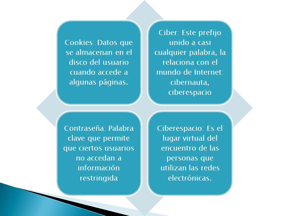 Cookies: Datos que se almacenan en el disco del usuario cuando accede a algunas páginas.